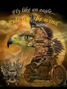 Fly like and eagle