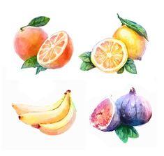 20 watercolor fruits Vector: Coconut, Garnet, Banana, Lemon, Grape, Watermelon, Orange, Fig, Plum, Mango, Pineapple, Avocado, Passion, Peach , Apricot, Tangerine, Papaya, Pear, Melon, Kiwi | $17