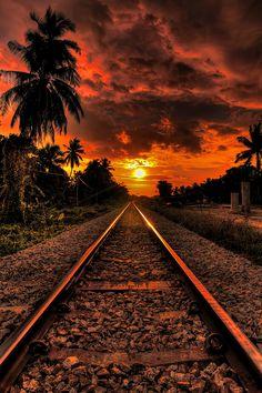 Pelos caminhos da vida