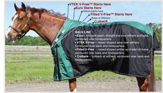 Schneiders Saddlery Fit Guide for Horse Blankets and Horse Sheets