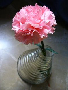 A beautiful present from a beautiful person, enjoy the power of pink!