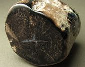 Dark Chocolate Petrified Wood Limb Section #EasyNip