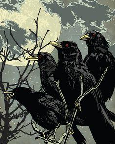 "Crows Ravens: "" At Night,"" Matt Peppler. Crow Art, Raven Art, Bird Art, Choucas Des Tours, Gravure Photo, The Wicked The Divine, Jackdaw, Crows Ravens, Kraken"