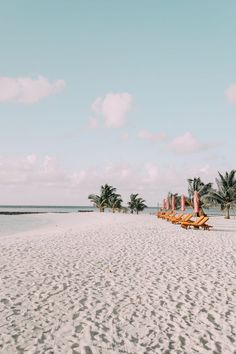 jetset | follow @shophesby for more gypset boho modern lifestyle + interior inspiration www.shophesby.com