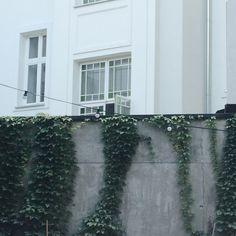 warsaw / hala koszyki