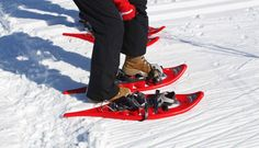 You can rent snow shoes in Punkaharjun Lomakeskus.