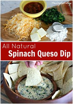 All Natural Spinach Queso Dip from The Lilypad Cottage - YUM! Because let's face it...there is nothing like queso!