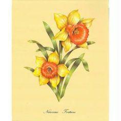 Image 3D Fleur - 2 narcisses 24 x 30 cm