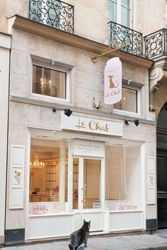 Cutest little Parisian boutique