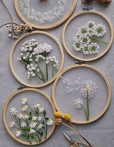 Plants transparent embroidery kit for beginner,flower diy Kit,beginner Hand Embroidery Full Kit ,diy start up embroidery set Diy Embroidery Kit, Hand Embroidery Art, Floral Embroidery Patterns, Simple Embroidery, Modern Embroidery, Beginner Embroidery, Embroidery Needles, Embroidery Hoops, Hand Embroidery Projects