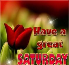 Have A Great Saturday saturday saturday quotes saturday images