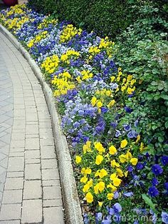 Garden stone path and flowers by Arcobaleno