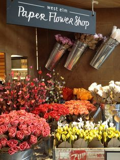 Paper Flower Shop, West Elm