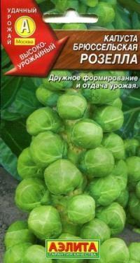 BRUSSELS SPROUTS  Brussels sprouts có vị ngọt tự nhiên. Chứa một hợp chất đặc biệt - iso cyanate axit propionic, chẳng hạn như chất béo. Theo nghiên cứu mới nhất cho thấy bắp cải tí hon chứa selenium, tiêu thụ thường xuyên của các tác dụng chống ung thư.