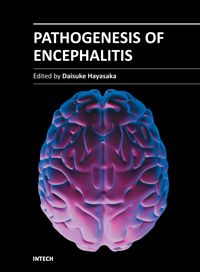 Open access book on Encephalitis