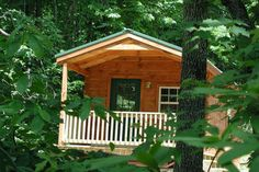 1980 forest cabin - Google Search