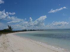Iguana Island (Turks & Caico's)