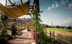 giocando al giardino della #rosa in @valdinon
