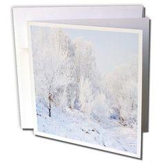 Yves Creations Winter Scenery - Snowy Trees - 12 Greeting... https://www.amazon.com/dp/B00AFPKKQE/ref=cm_sw_r_pi_dp_LWaAxbMNB062H