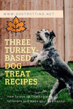Recipe: Canadian Thanksgiving Turkey Treats