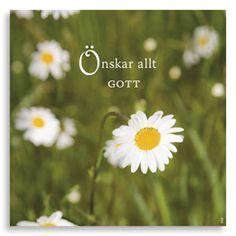 Kort Önskar allt gott, ur kollektion Livskonstnär. Foto: Anja Callius. Från (c) Kreativ Insikt.