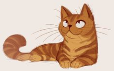 American Shorthair (orange) drawing from http://dailycatdrawings.tumblr.com/
