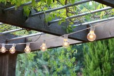 String lights hang from an overhead trellis - Decoist Patio Trellis, Clematis Trellis, Flower Trellis, Metal Trellis, Backyard Pergola, Wooden Pergola, Pergola Plans, Privacy Trellis, Pergola Carport