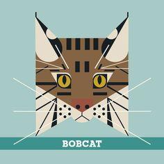 Bobcat by Charlie Harper