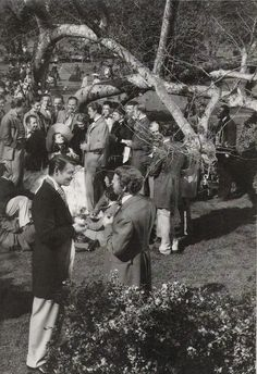 Les Beehive – Gone with the Wind behind-the-scenes photos (1939)