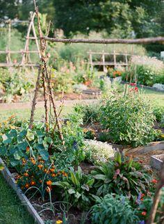 Gardens at Tuckahoe Plantation in Richmond, Virginia. The Cayles had a similar garden. Southern Weddings, Southern Belle, Farm Gardens, Outdoor Gardens, Organic Gardening, Gardening Tips, The Beautiful South, Virginia Is For Lovers, Gardens