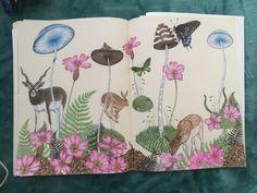 #daisyfletcher #intothewild Daisy, Daisy Flowers, Daisies, Bellis Perennis