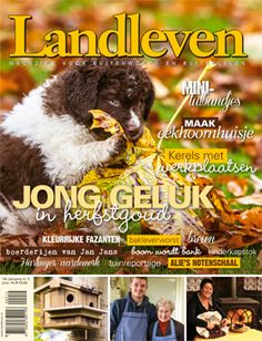 De cover van Landleven 9, november 2014. Wetterhoun pup.