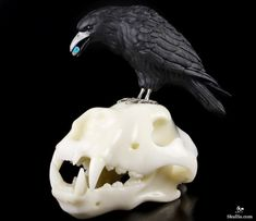Original Titan Black Obsidian Carved Crystal Raven with Opal in Mouth, Standing on Wolf Skull Sculpture, Crystal Healing Wolf Skull, Black Skulls, Crystal Skull, Animal Skulls, Tattoo Inspiration, Stones And Crystals, Crow, Crystal Healing, Art Reference