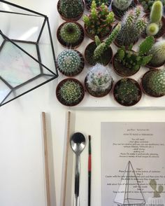 We've added some new #geofleurworkshop dates - come along to our Terrarium or #Kokedama workshop - get your ticket here: || http://ift.tt/1McP7pW #geofleur || by geo_fleur