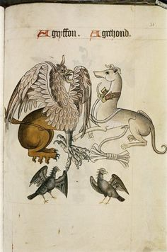 from the Tudor Pattern Book c.1520.