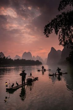 Dawn Patrol ! - Fishermen with their cormorants on early morning fishing expedition.  Taken in Guilin,China. A destination for classic Chinese landscape photographs. But being loved to death by Chinese themselves !