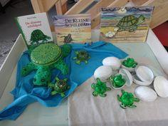 """Voorleesweek /  De verteltafel rond : De kleine schildpad en het lied van de zee.  We lazen ook """"De slimme schildpad."""" van Eric Carle voor.  De kleuters vertelden wat de gelijkenissen en de verschillen tussen beide boeken waren."""