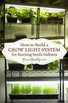 Build a Grow Light System for Starting Seeds Indoors You can assemble your own inexpensive grow light system that will serve well for starting seeds indoors or growing an indoor garden. Indoor Vegetable Gardening, Hydroponic Gardening, Container Gardening, Organic Gardening, Gardening Tips, Urban Gardening, Veggie Gardens, Urban Farming, Aquaponics System