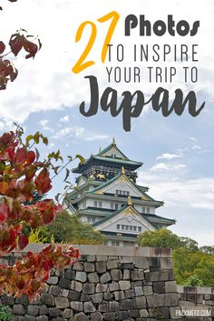 Thinking of going to Japan? Here are 27 photos to inspire you | packmeto.com