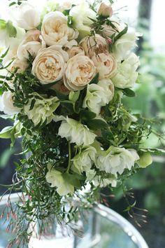 世界一好きな花屋といってもらえるように blog du I'llony 芦屋と南青山に店を構える花屋アイロニーオーナー日記: 2011年2月 アーカイブ