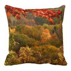 Autumn Abstract Pillows