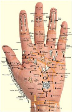 Chart and techniques for hand reflexology and massage of meridian points. I would rather take my health in my own hands, literally, then trust it to the fragmented philosophy of Western medicine, except in rare circumstances when it's absolutely necessary.