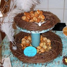 """Photo 4 of Birds/Nests/Feathers / Baby Shower/Sip & See """"Feather Her Nest Sip-N-See"""" Bird Theme Parties, Bird Birthday Parties, Owl Parties, Bird Party, 2nd Birthday, Birthday Ideas, Garden Parties, Themed Parties, Party Party"""