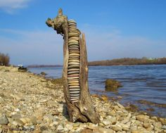 driftwood_art_stone_line_in_hungary_by_tamas_kanya_by_tom_tom1969-d79y5oe.jpg (998×800)