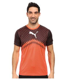 PUMA IT Evotrg Graphic Tee. #puma #cloth #shirts & tops