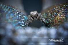 Photo by Annandale Photography http://annandalephotography.com/