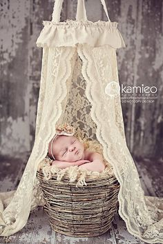the original lace newborn canopy . . . photography prop