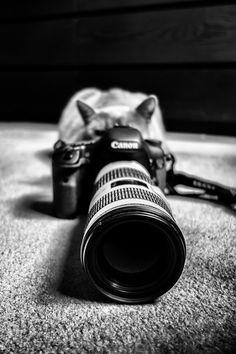 Photo My little Photographer :) by László Oláh on 500px