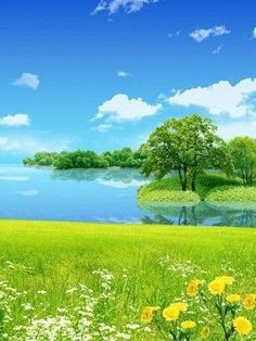 """Search Results for """"natural scenery wallpaper for mobile"""" – Adorable Wallpapers Beautiful Nature Wallpaper Hd, Best Nature Wallpapers, Nature Iphone Wallpaper, Beautiful Landscapes, Wallpaper Para Iphone 6, New Wallpaper Hd, Galaxy Wallpaper, Mobile Wallpaper, Special Wallpaper"""