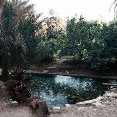 """Blue Lagoon...#meski #morocco #errachidia #berber #paradise"" Photo taken by @bakchic_thelabel on Instagram"